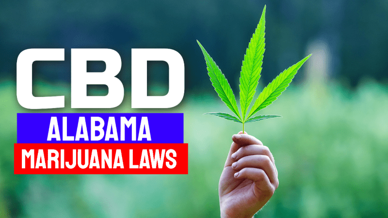 Alabama Marijuana Laws