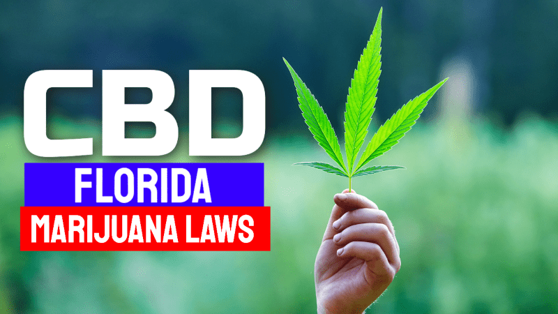 Florida Marijuana CBD Laws