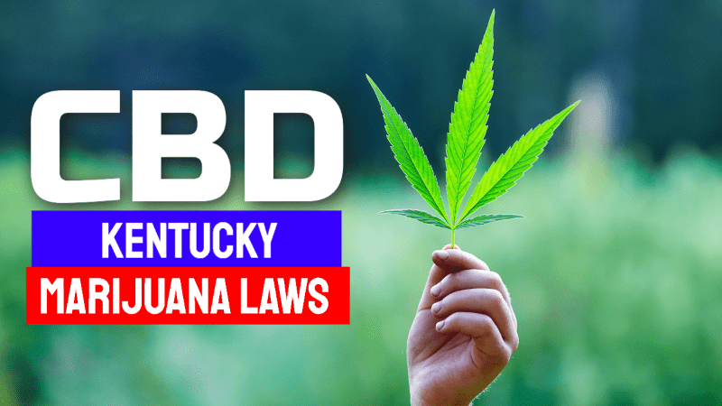 Kentucky Marijuana CBD Laws
