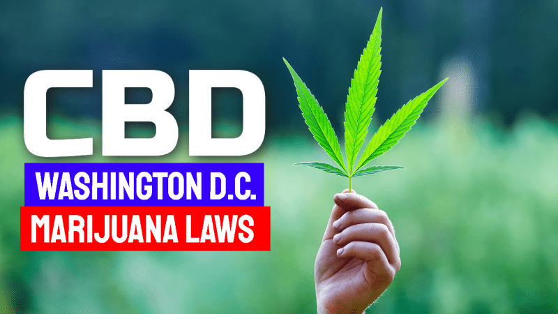 Washington DC Marijuana CBD Laws
